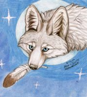 White Coyote by NatsumeWolf