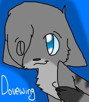 3.Dovewing by Aruku-Pear