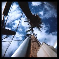 holga shots 6 by marvinsmith
