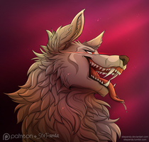 Wolf by StePandy