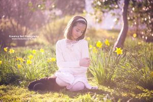 Spring Warmth - Day 78 by rosannabell