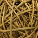 Sticks Texture Vampstock  by VAMPSTOCK
