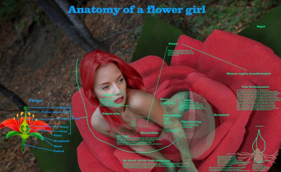 Anatomy  of A Flower-girl by tsilver