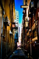 Up the Alley by alvse