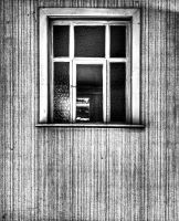 Window by stengchen