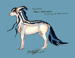 Rooeibin up to date by moonfeather