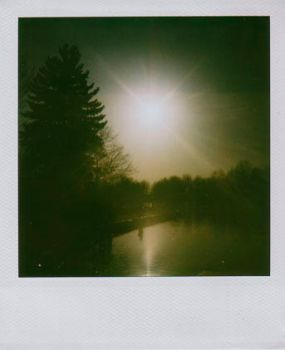 polaroid 001 by sinderella