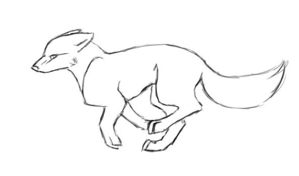 Wolf Pencil Test Animation by eagle-flyte