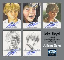 Galaxy 6 cards: Young Anakin by AllisonSohn