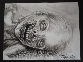 Bicycle Girl- A The Walking Dead Portrait by Trunk-of-monkeys