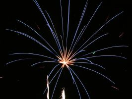 Spider-like firework by fotofox17