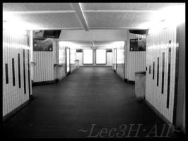 Railway Station.I by Lec3H-All