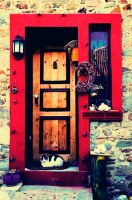doors of thenedos I by veshtitza