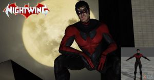 New 52- Nightwing Costume #2 by lonelygoer