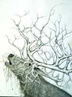 Ivory Branches by Arboris-Silvestre