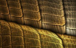 Snakeskin by bluesman219