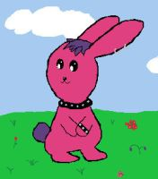Bunny in a Field by the-pink-dragon