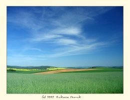 Fields by iciatko