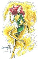 Phoenix by DaXiong by thelastlaugh84