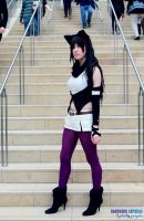 Anime Boston 2014 - by Roanam