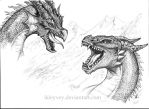 Dragon fight by Ikleyvey