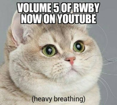 heavy breathing cat: rwby by VinceOnAStick