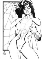 Spiderwoman by zchaves