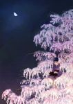 Cherry blossoms night by sirauo