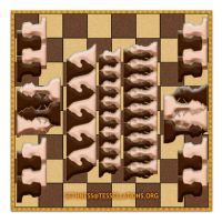 Chess-elation by sethness