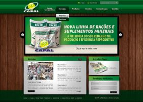 capal website v1 by tutom