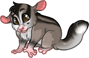 Sugarglider Commission by Tigryph