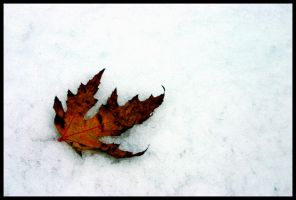 Autumn is Gone by cabstiv