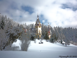 HDR Peles Castle by Iulian-dA-gallery