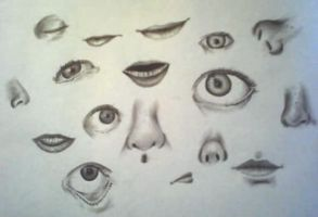 Eyes Nose Mouth Study by Christinabean