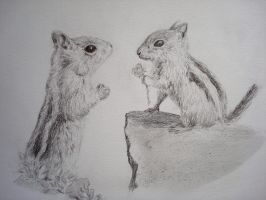 Squirrels in Love by Idator
