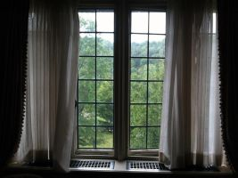Window by Guillermo-da-Lucca