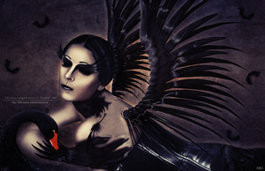 Black Swan by OfficinaOscura