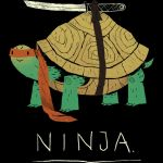 Ninja by Design-By-Humans