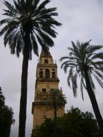 Church tower of Cordoba by Flelir
