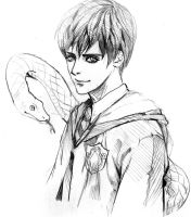 harry potter fan art-Tom skt by moto0207