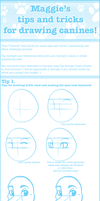 Tips and Tricks for drawing canines by etuix