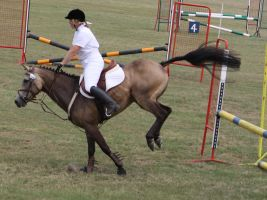 STOCK Showjumping 507 by aussiegal7