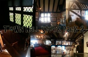 Town Hall Stock Pack 2 by sivvus