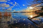 beautiful nature at Lake Tegel 4 by MT-Photografien