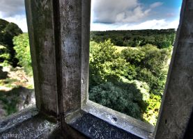 Out The Window At Blarney by Seanlcky13