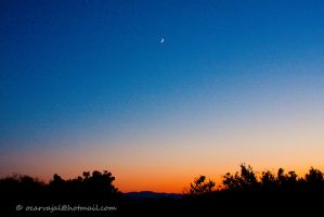 Crescent Moon Sunset by carva822