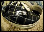 Vans by vesher