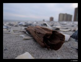 Driftwood by johanneswalter