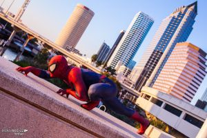 Spidey a'Creepin by PAPANOTZZI