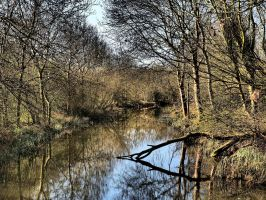 River Cambridgeshire - Early Morning by davepphotographer